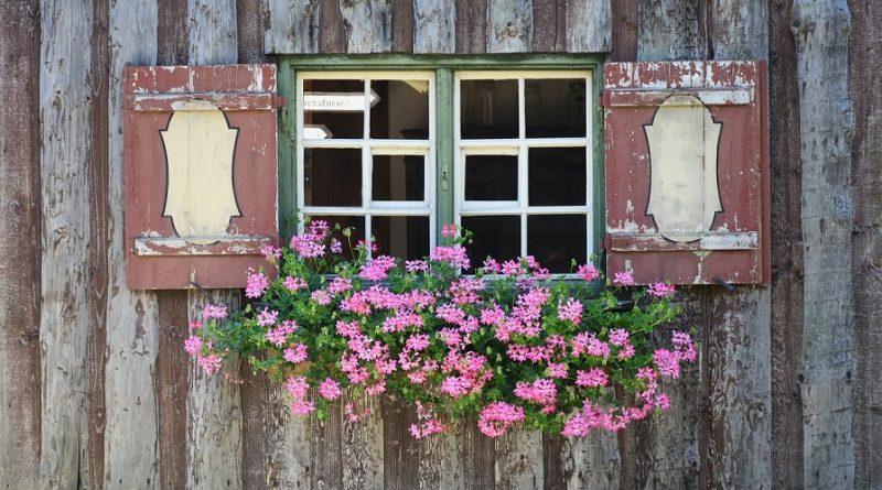 Case in legno, sicure e convenienti
